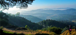 Coorg - Wayanad - Ooty - Kodaikanal - Munnar Tour Travel Package